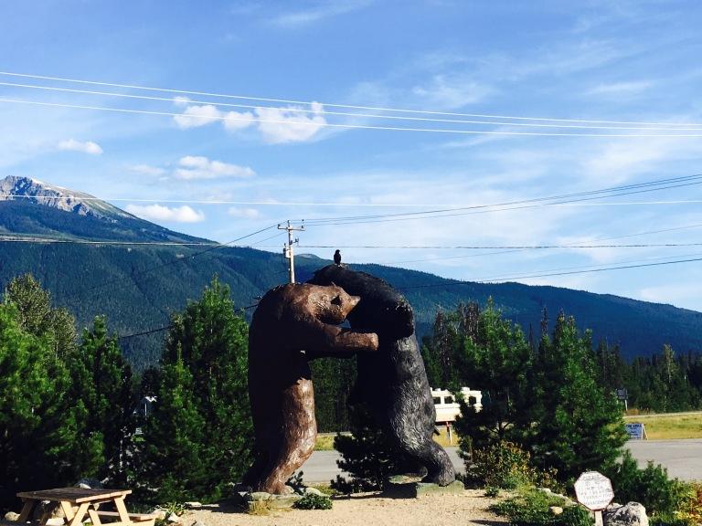 BC Bears